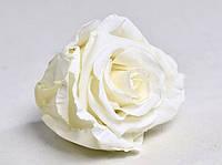 Роза стабилизированная бутон белый