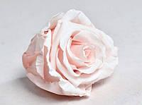 Роза стабилизированная бутон нежно розовый