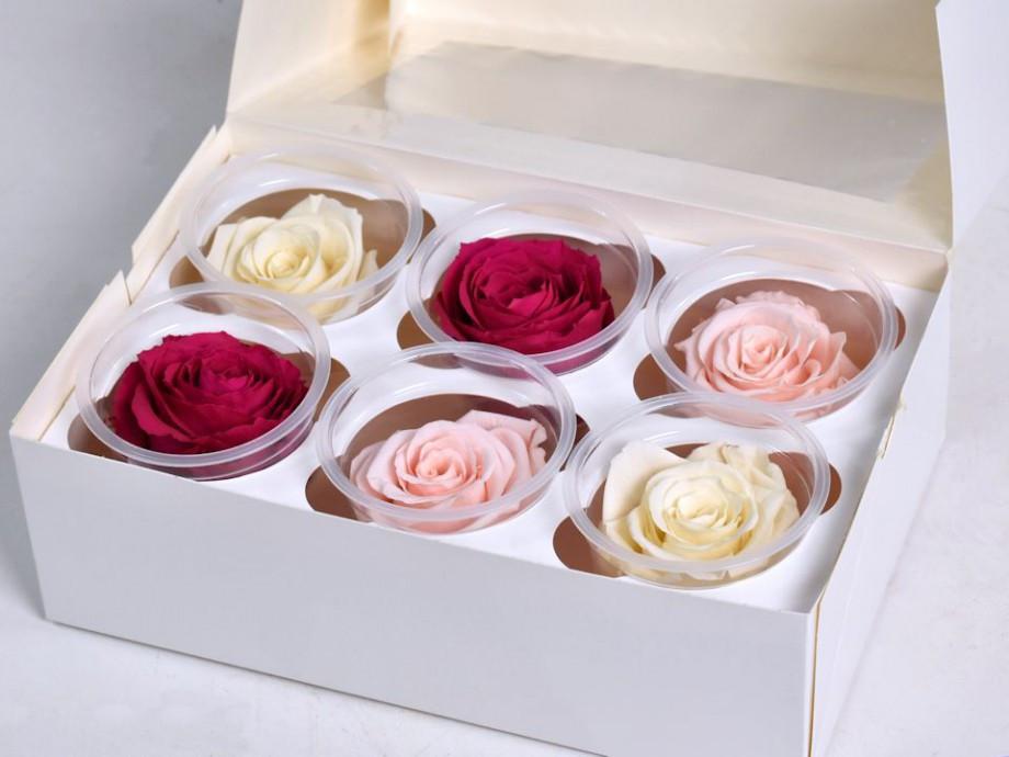 Роза стабилизированная бутон набор 6 штук