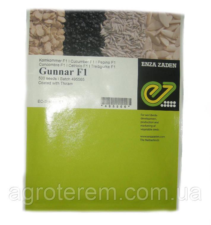 Семена огурца Гуннар (Gunnar) F1 500 с(Гунар)