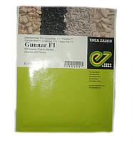 Семена огурца Гуннар (Gunnar) F1 500 с(Гунар), фото 1