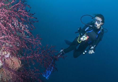 Подводный фонарь для дайвинга BL PF02