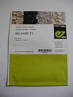 Семена  томата  Белфаст F1 500с
