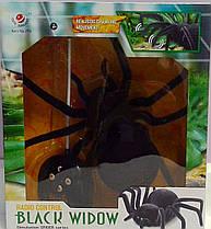 Паук на радиоуправлении Black Widow 779 Китай