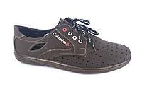 Туфли коричневый мужские на шнурках Cardinal D-5