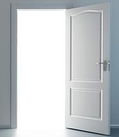 Двери под покраску (Канадка) Классика