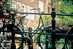 """Экскурсионный тур в Европу """"Весна в Амстердаме"""", фото 2"""