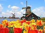 """Экскурсионный тур в Европу """"Весна в Амстердаме"""", фото 5"""