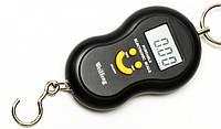 Кантерные Электронные Весы ACS 603 на 50 кг