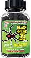 Cloma Pharma Black Spider 25 Ephedra 100 caps