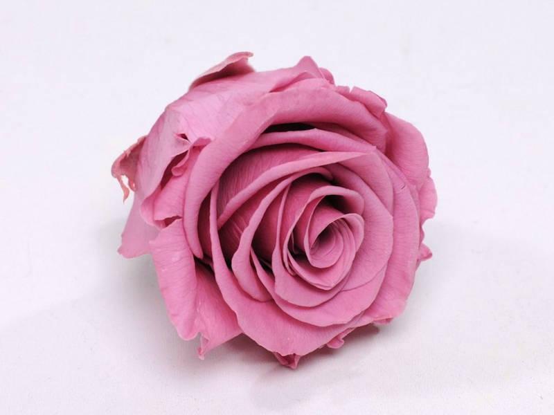 Роза стабилизированная бутон розовый для декора и флористики