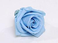 Роза стабилизированная бутон голубой для декора и флористики