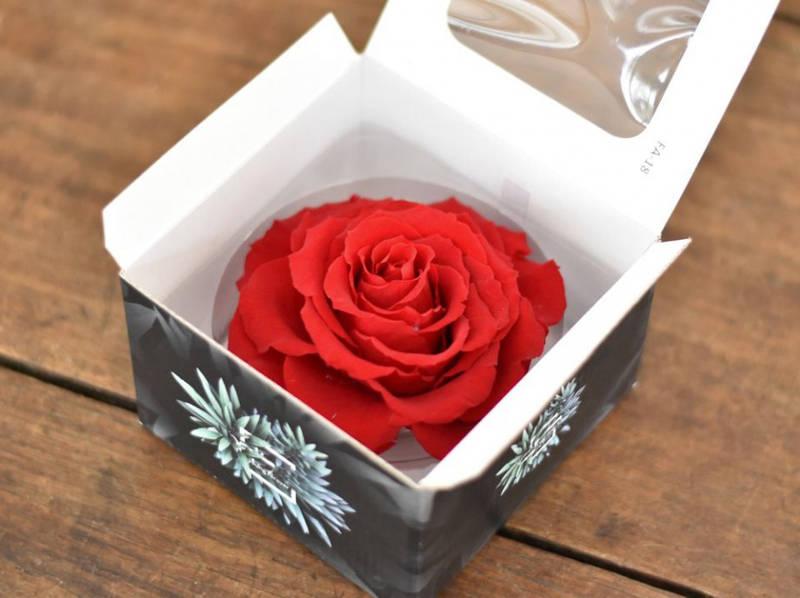 Роза стабилизированная бутон красный 9см диаметр для декора и флористики