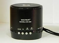 Портативная MP3 Колонка WS 529 Спикер USB FM am