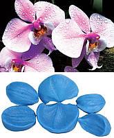 Набор вайнеров Орхидея