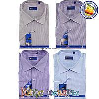 Мужские рубашки с коротким рукавом (ворот 39- 45) (vk34e)