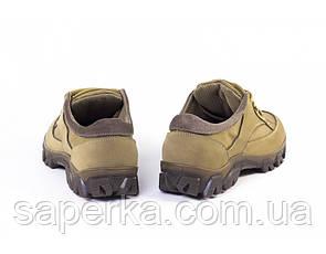 Тактические мужские кроссовки на мембране. Модель 5 кайот , фото 2