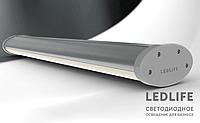 LedLife Ellipse AL Expert  27W 3240Lm 600 мм накладной светодиодный LED светильник алюминиевый