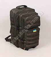 Рюкзак тактический штурмовой ASSAULT OLIVE - KRINKEL