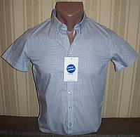 Рубашка (шведка)  приталенная для мальчиков 134-164 Венгрия