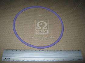 Уплотнительное кольцо 142, 6 X154, 2 X 5, 8 lila SH65 / FPM RD (прокладка гильзы) (производство  Elring) РЕНО ТРАК, ВОЛЬВО, A-Серия, Б  12, МAГНУМ,