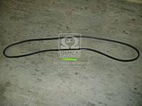 Ремень С(B)-3585 (Производство ЯРТ) С(В)-3585