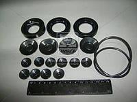 Ремкомплект НШ-100А, 71А-3 ЭО2621, К-700, К-701 (производитель Украина) Р/К-108