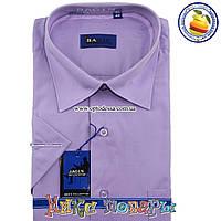 Мужские рубашки короткий рукав (ворот 39- 46) (vk38a3)