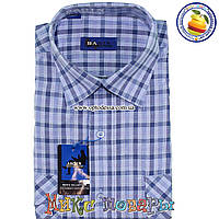 Мужские рубашки с коротким рукавом 100% Коттон (ворот 39- 46) (vk44f-2)