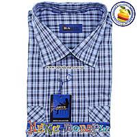 Мужские рубашки Короткий рукав 100% Коттон (ворот 39- 46) (vk44c-4)