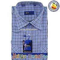 Мужские рубашки Короткий рукав 100% Коттон (ворот 39- 46) (vk44e- a6c05eb181242
