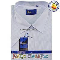 f2f76127489 Рубашки мужские БАТАЛЫ оптом в категории рубашки мужские в Украине ...
