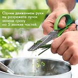 Ножницы для нарезки зелени с 10 лезвиями шеткой для очистки 22 см , фото 6