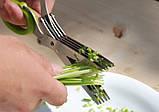 Ножницы для нарезки зелени с 10 лезвиями шеткой для очистки 22 см , фото 7