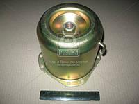 Цилиндр энергоаккумулятора тип 20 (гальванированный) (производитель Россия) 100.3519162