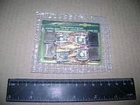 Рем комплект щеток стартера СТ-230(АВТОРЕМ0226) 23280