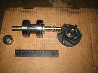 Ремкомплект насоса водяного Д 245 (производитель Украина) 240-1307030