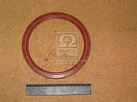 Сальник вала коленчатого МАЗ красный 140х170х13 (производитель Украина) 236-1005160