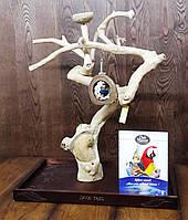 Присада стенд для птиц (Java Stand Ява) 80см.