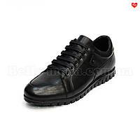 Мужские спортивные туфли с эмблемой Basconi