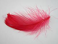 Перо натуральное маленькое (Красный)
