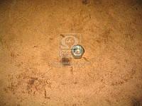 Гайка стремянки переднийи заднего рессоры ГАЗ 3302 (производитель ГАЗ) 292873-П29