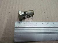 Болт трубки топливной (производитель ЯМЗ) 310122-П2