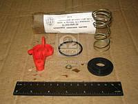Ремкомплект головки соединительная ПАЛМ с фильтром ( красный) (производитель ПААЗ) 11.3521509-10