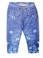Бриджи трикотажные для девочек Sincere, размер 98,  арт. CJ-1625, фото 1