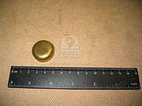 Заглушка головки блока цилиндров МАЗ (производитель ЯМЗ) 313934-П