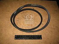 Ремень А-1250 (производитель ЯРТ) А-1250