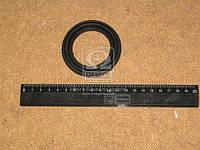 Чехол поршня ГАЗ 3110, 3302 защитный (дисковые тормоза) (производитель ЯзРТИ) 3105-3501188