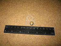 Муфта двухконусный на трубку тормозная Dнаружная= 8мм латунь (производитель Россия) 864815