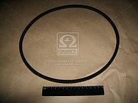 Ремень 8,5(10)х8х944 насоса водяной +генератора ВАЗ 2101-07 (производитель БРТ) 2101-1308020